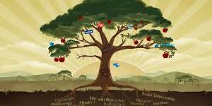 Social media continuïteit en groei