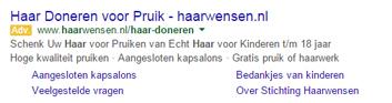 Voorbeeld Google Adwords Advertentie Ad Grants