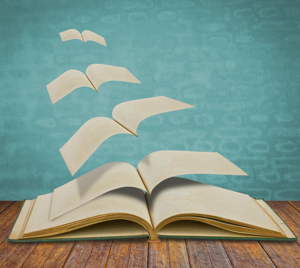 Storytelling is een boek
