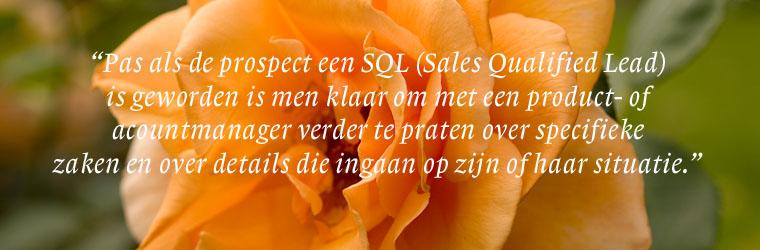 Van prospect tot SQL