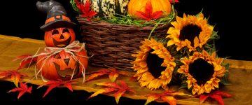 autumn-black-dark-decoration-41200